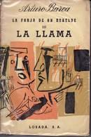 barea_llama